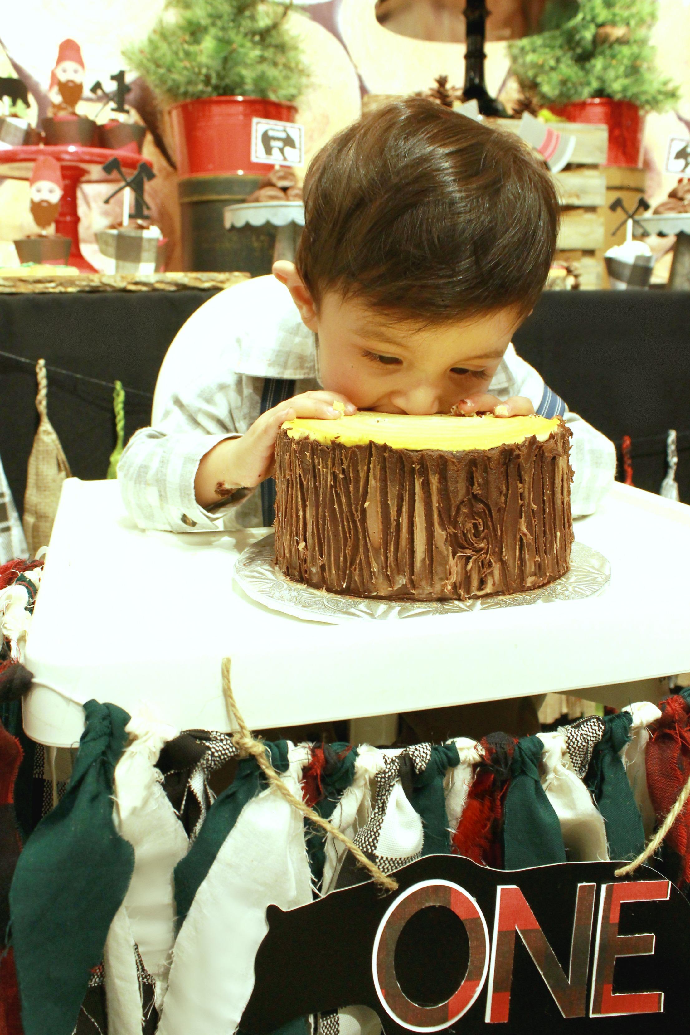 birthday boy-lumberjack-logcake-www.SugarPartiesLA.com.jpg