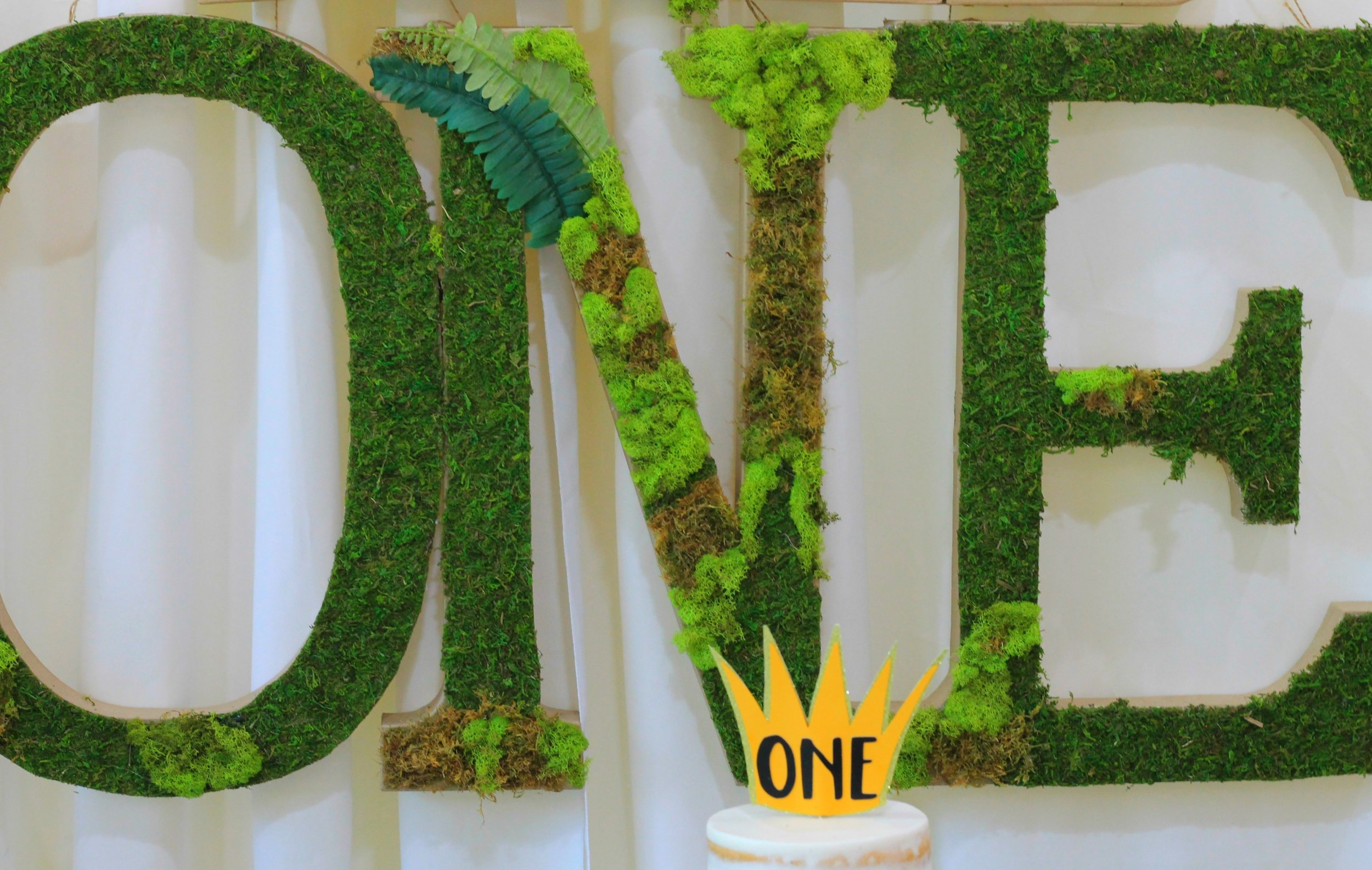 Wild One-Moss Letters-One-wild one birthday decor-first birthday decor ideas-moss-wild one party decor-www.sugarpartiesla.com.jpg