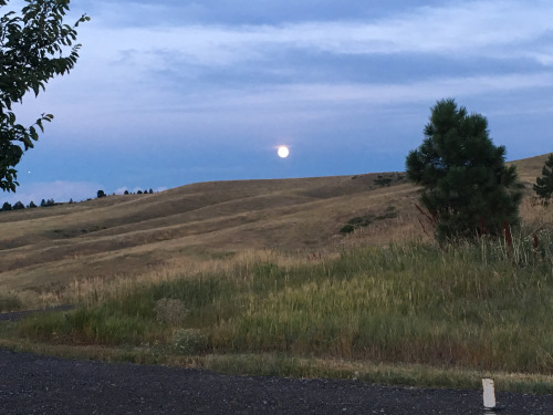 A picture I took of the moon over a hill not far from my new home