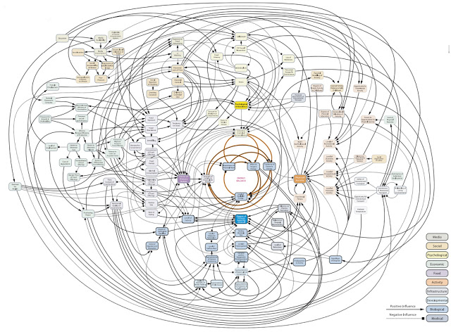 "image source . #1 image from googling ""complexity of obesity"""