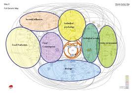 "image source . #3 image from googling ""complexity of obesity"""