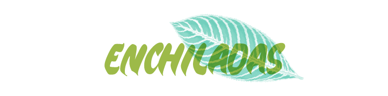 enchiladas_green_100.png