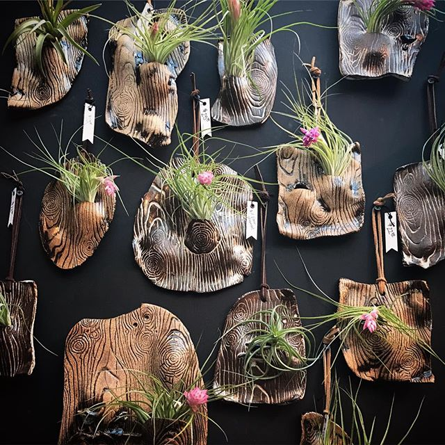 🌿Some fun new gift items by our featured artist Diane Montes! 🌿#airplant #holidaygifts #madeinny #handmade #pottery #greenliving #vegan #veganlifestyle #vegangirl #tillandsia #tillandsias #terrarium @glassclayfireisland