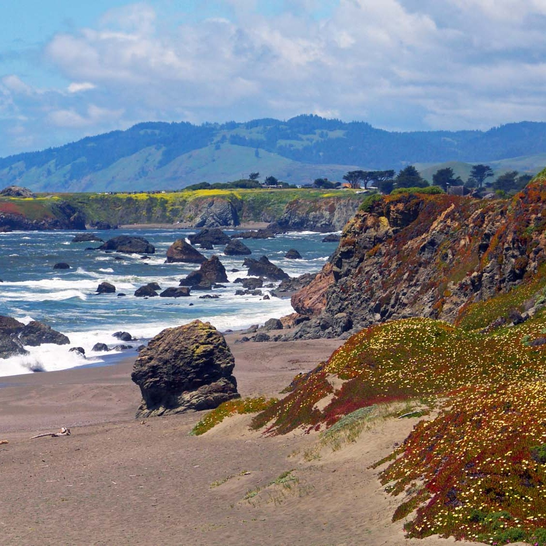 Sonoma Coast State Park Campgrounds