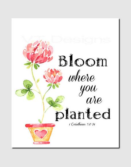 Bloom where you are planted spring quote.   Happy Easter