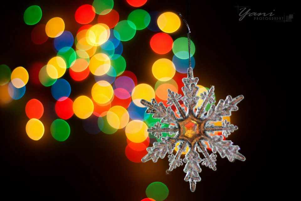Christmas Holiday Picture ornaments photography.jpg