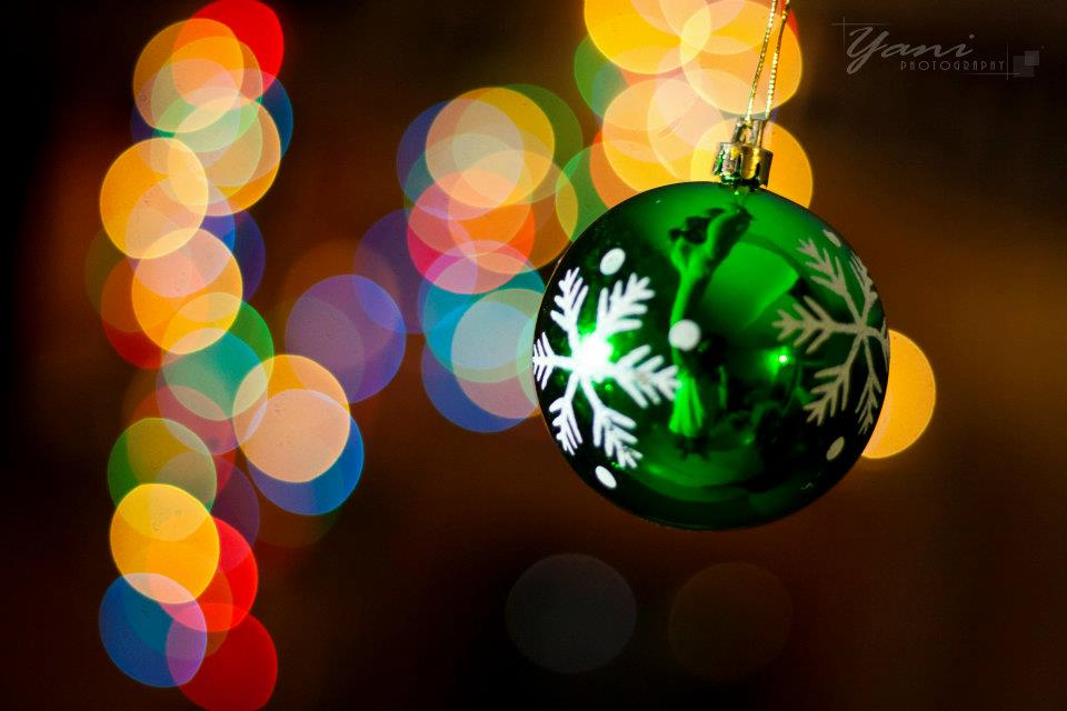 Christmas Holiday pictures ornament photography-2.jpg