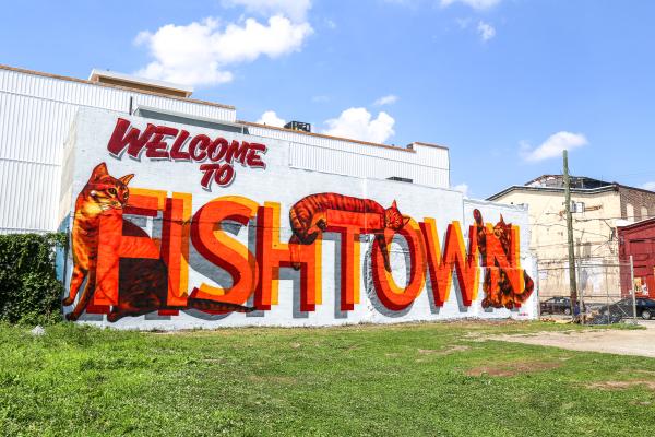 catsfishtownfull.jpg