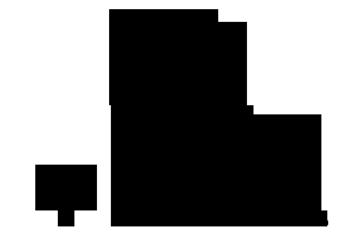 VIRUS-Logo_BLK_V.png