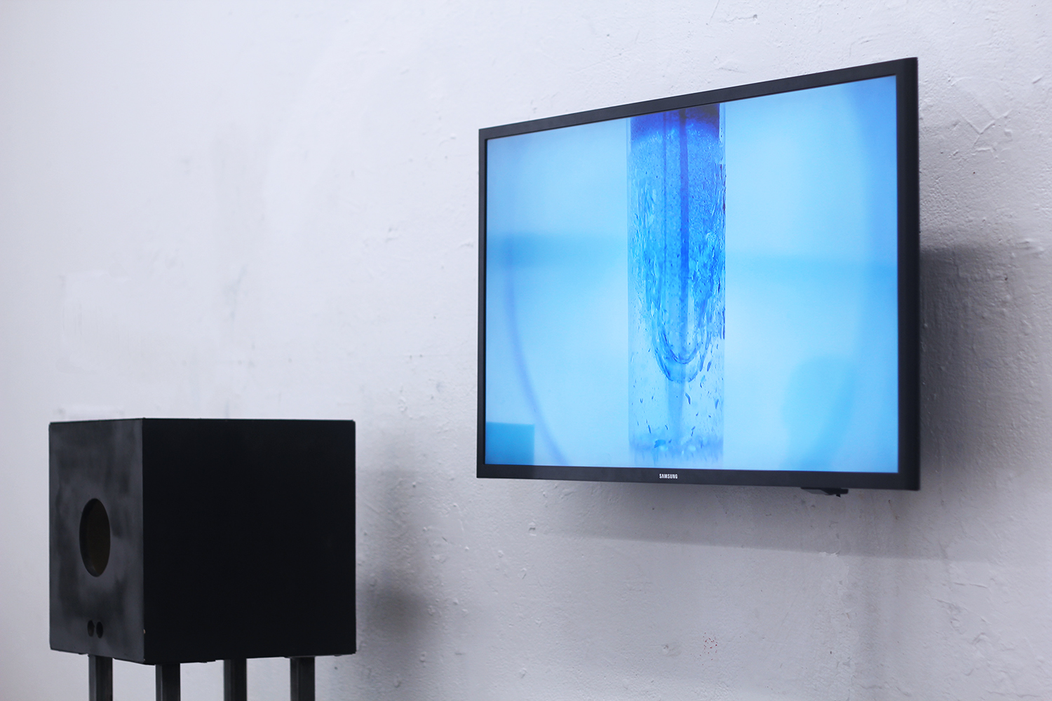 The time we live within and without(2017)    Interactive installation with light, distance sensor, and fruit flies' habitat  12 mins video loop