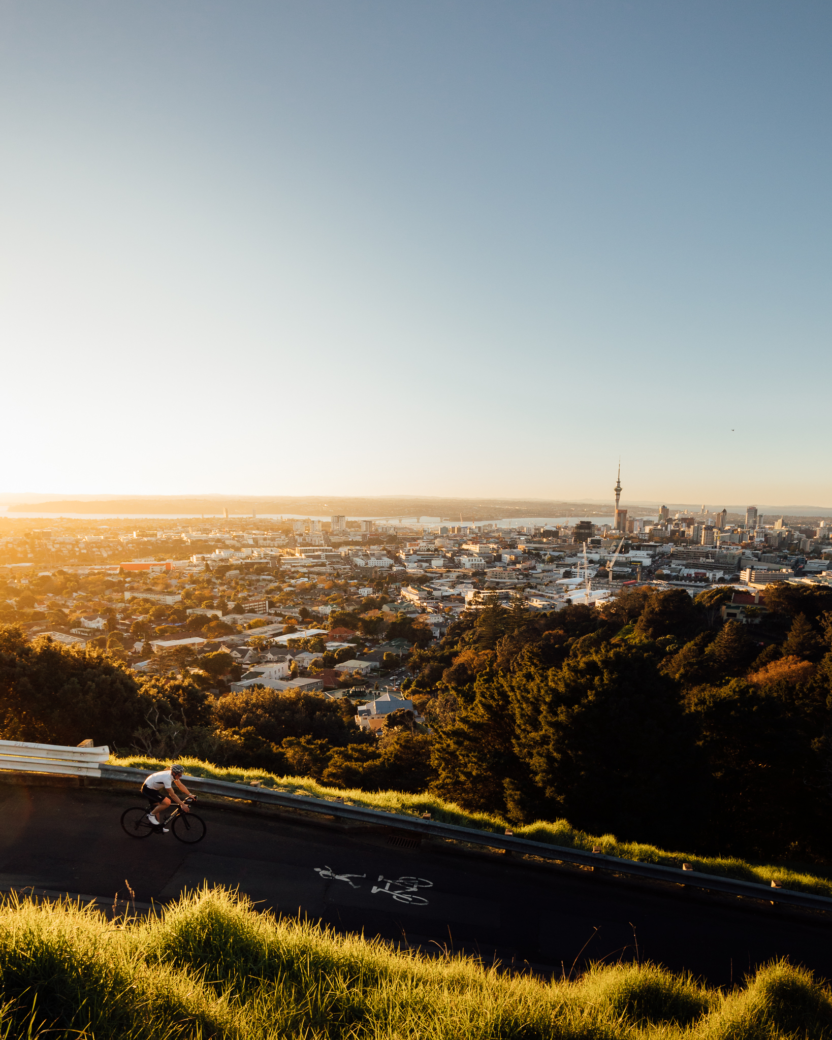 Cyclist \ Mt Eden