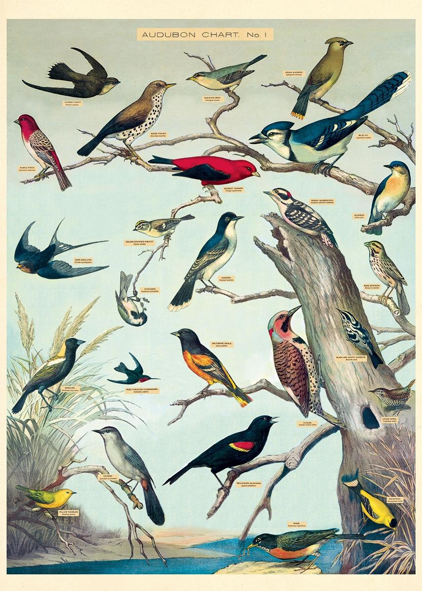Audubon Birds Wrap