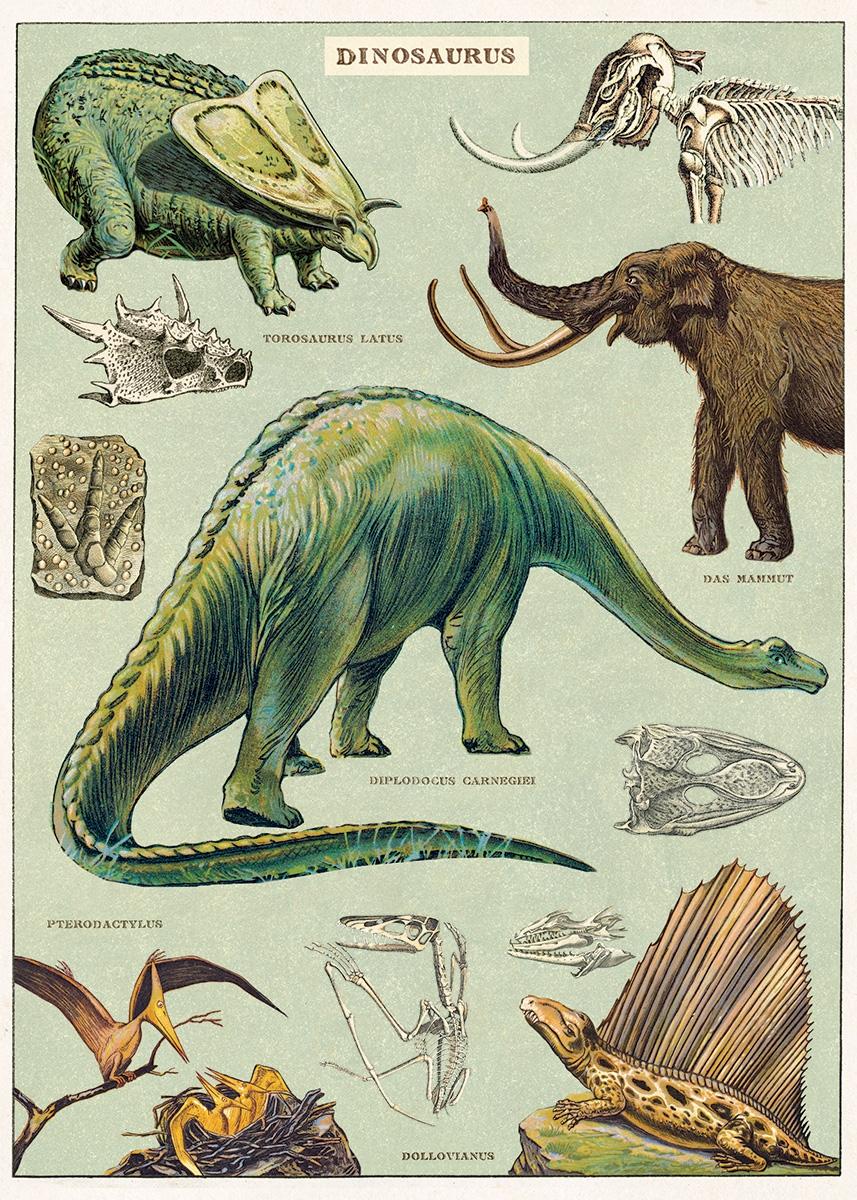 Dinosaurs Wrap