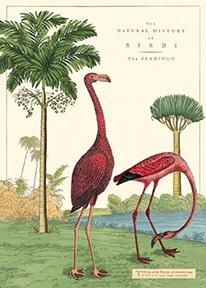 Flamingo Wrap