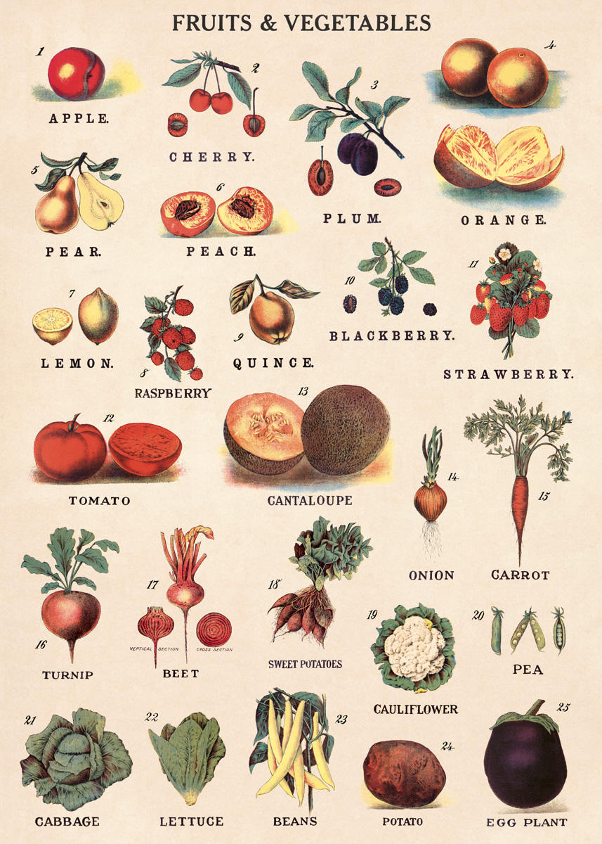 Fruit & Vegetables Wrap