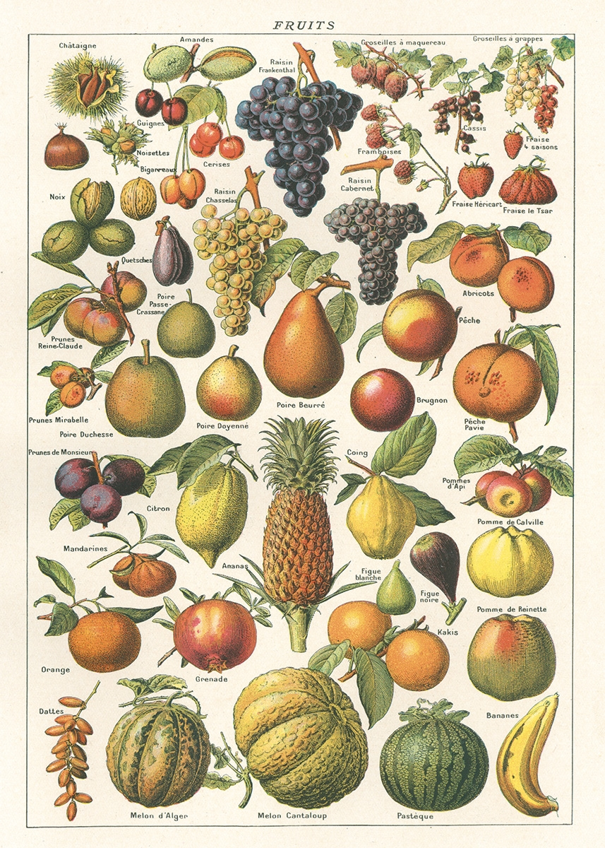 Fruit Wrap