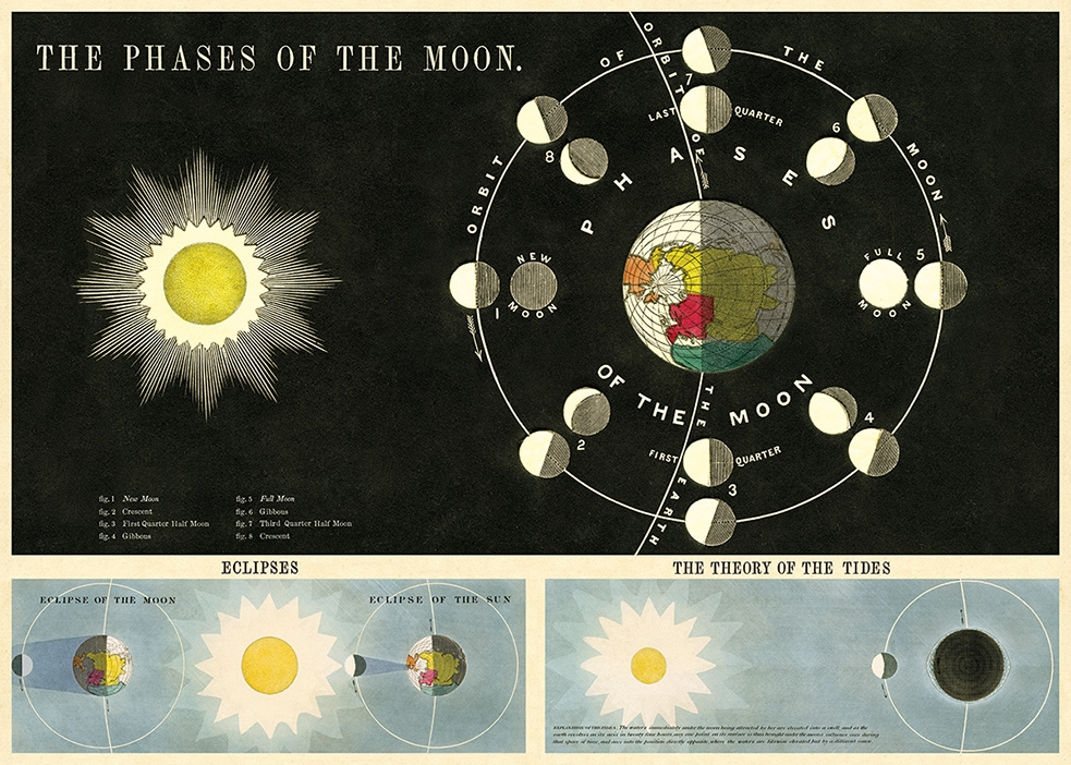 Phases of the Moon Wrap