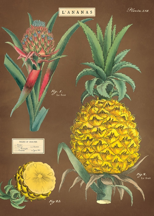 Pineapple Wrap