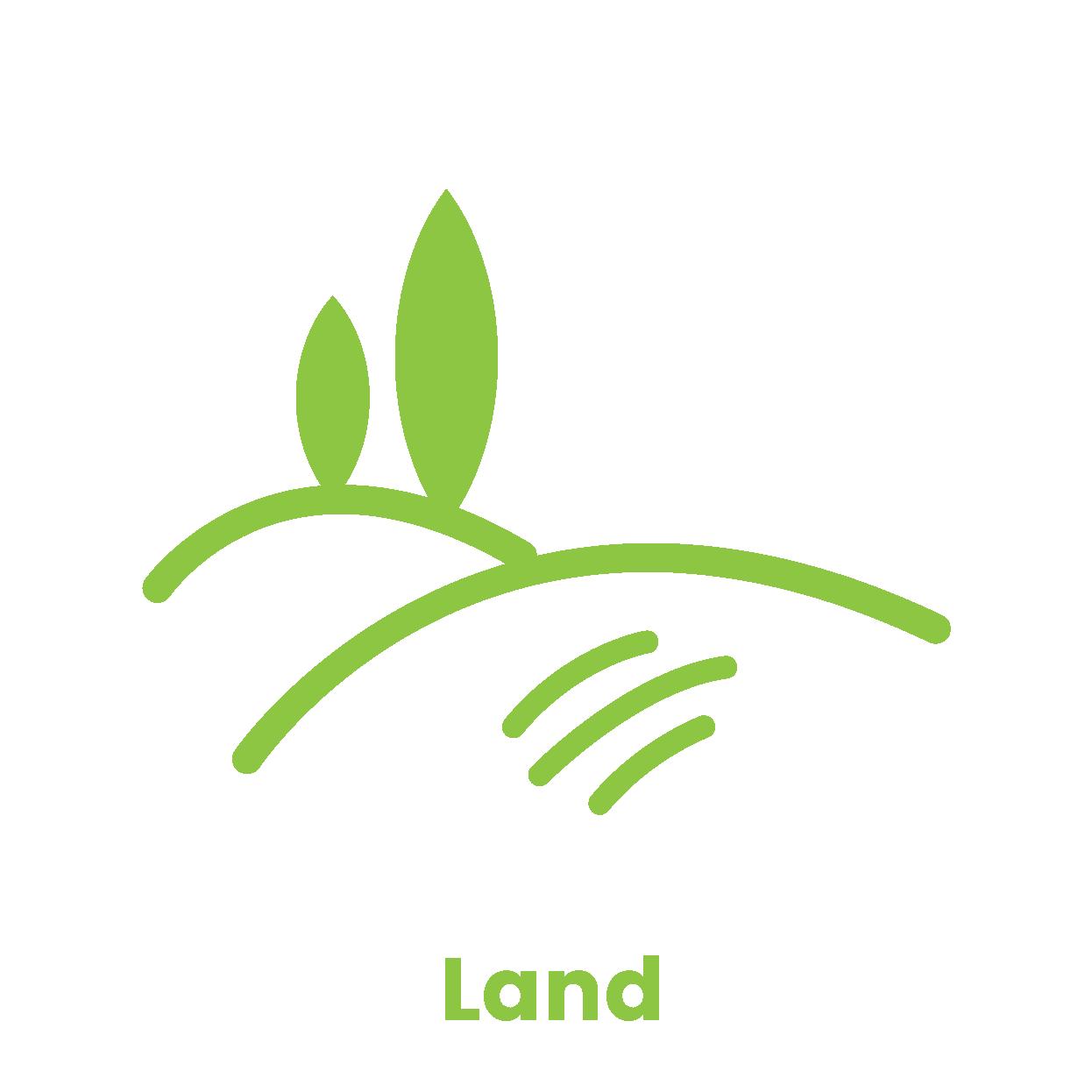 p4 PM - Land-01.png