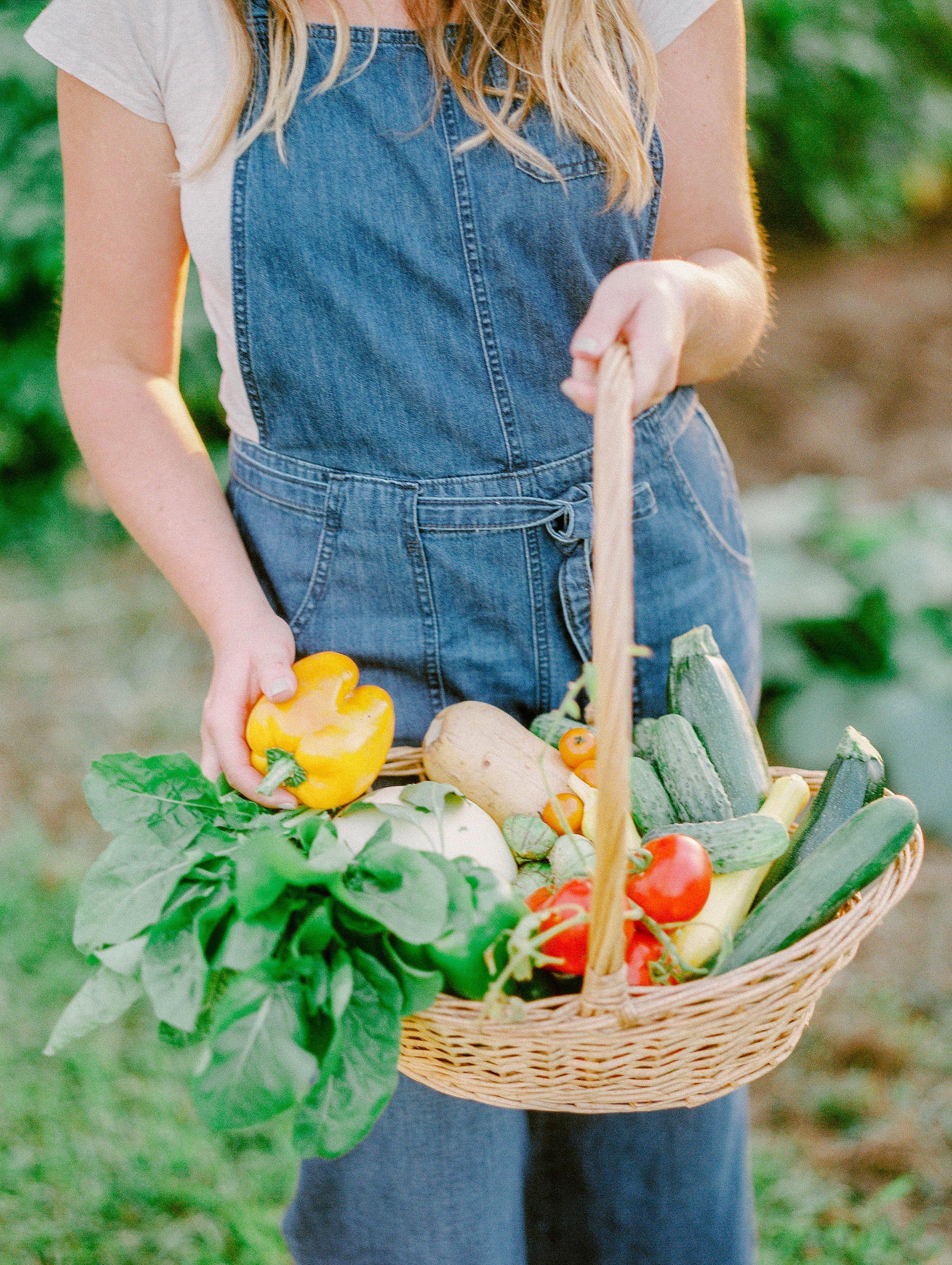 vegetablegardenmorganworley_0017.jpg