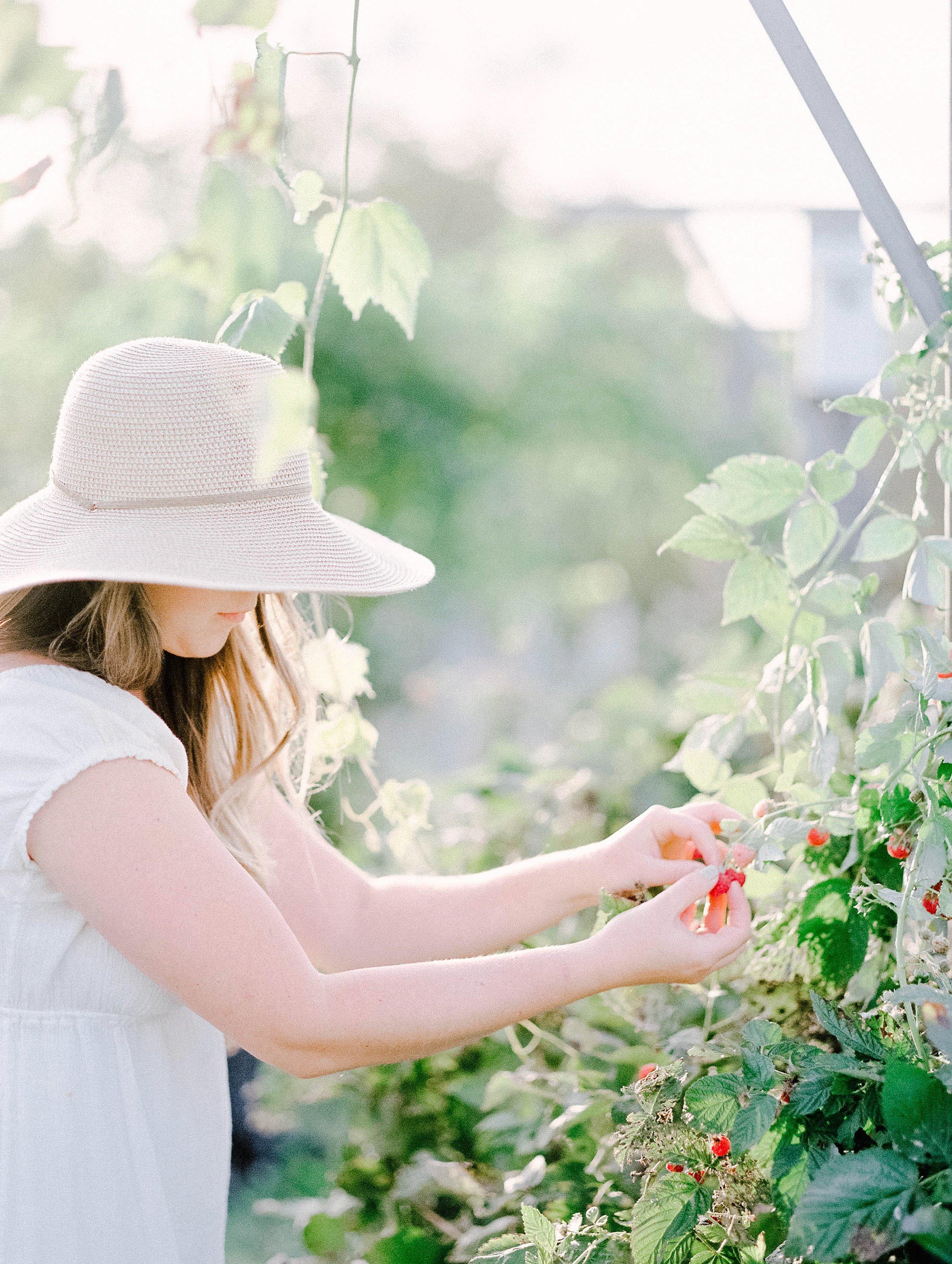 vegetablegardenmorganworley_0021.jpg