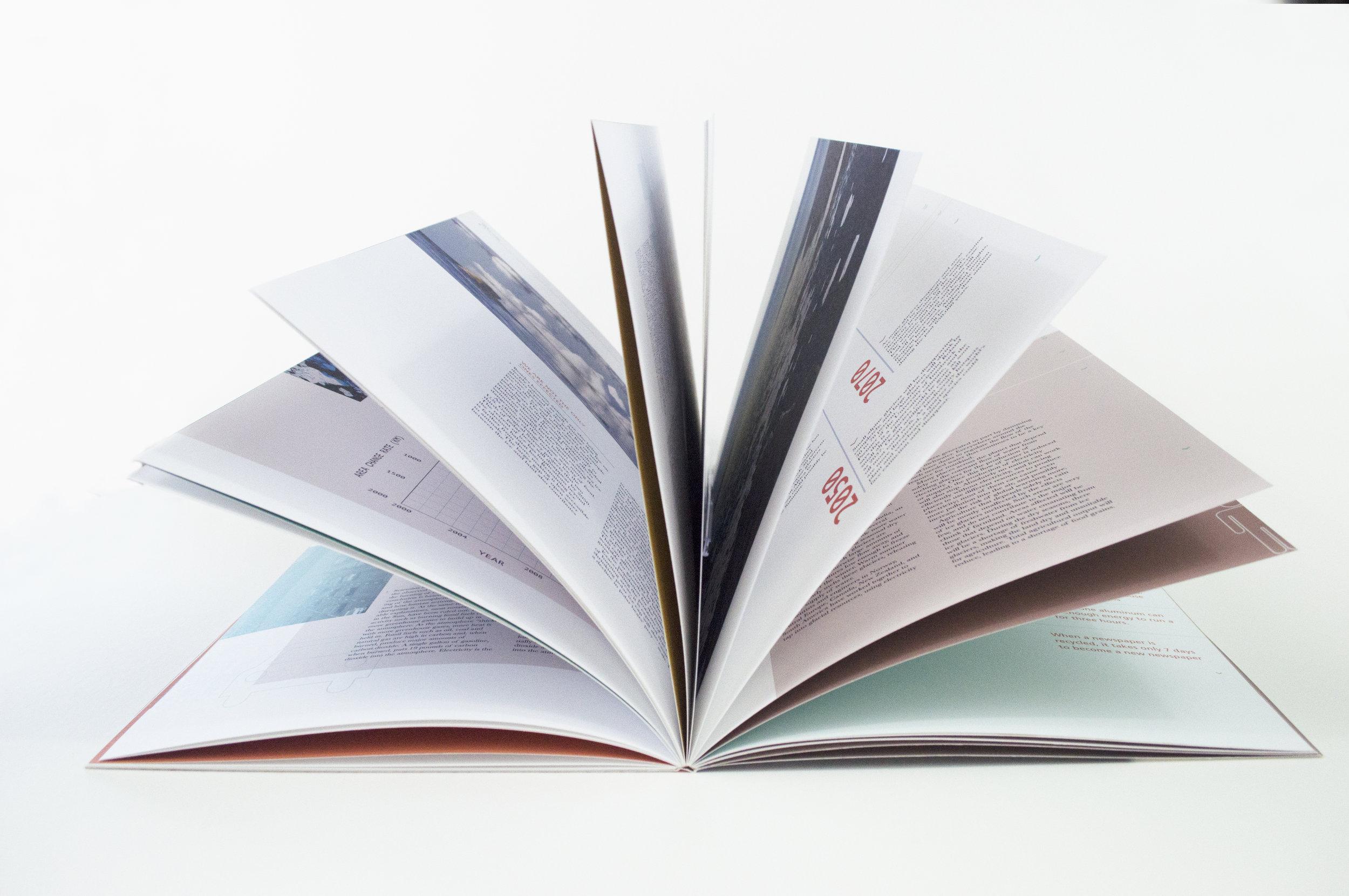 bookfan2.jpg