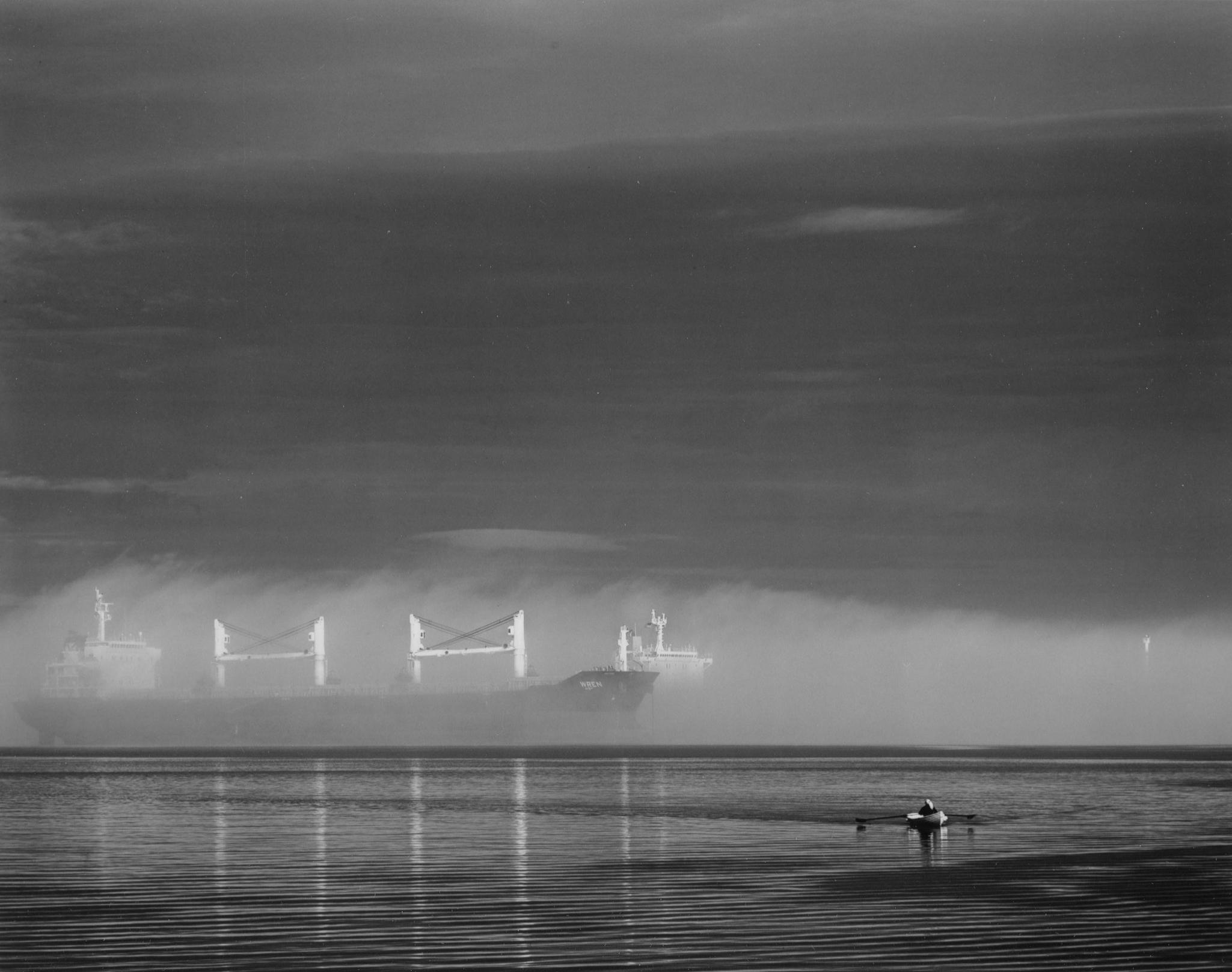Single Rower, Wren In Fog