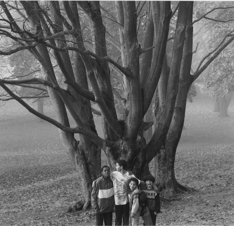 Boys In The Park Under The Maple In Early Fall, 1977 Wright Park Tacoma,  Today's Coolphoto 09/30/2019 Vintage Silver:: Edition One Only :: Size 8x10 :: Signed :: $625.