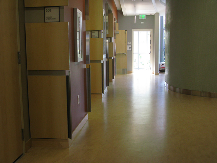 The hallway outside our lab and offices.