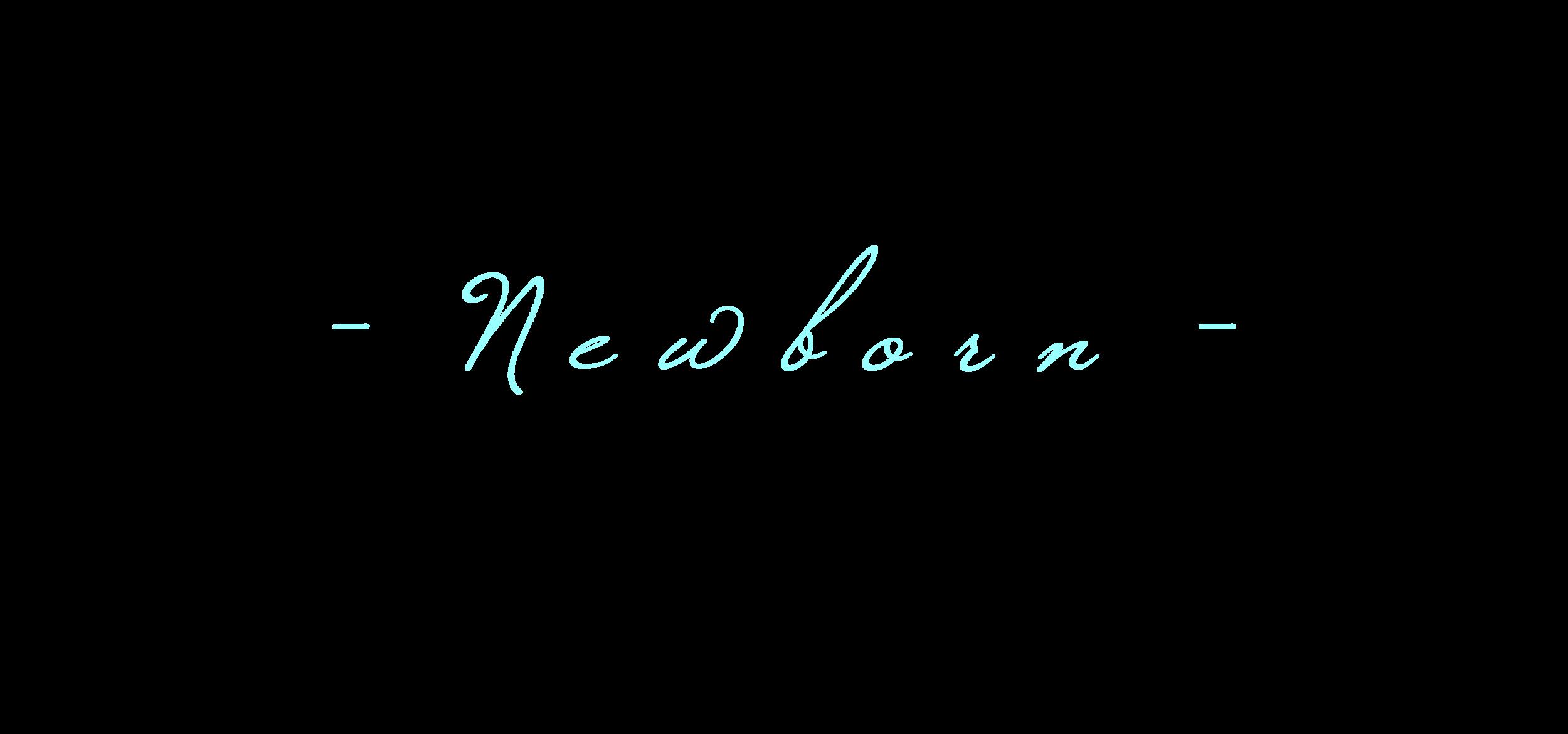 newborn banner.png