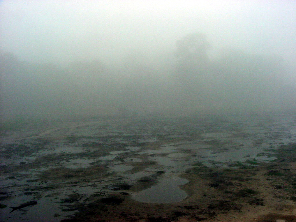 The Bai in Fog