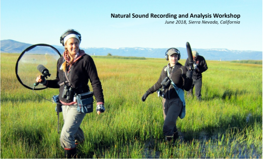 Natural Sound Recording Workshop.jpeg