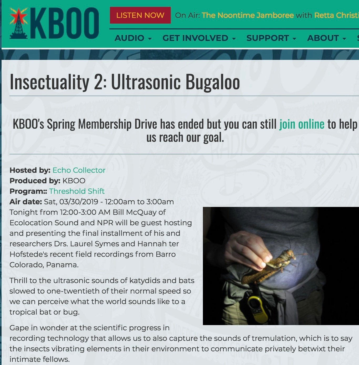 https://kboo.fm/media/72156-insectuality-2-ultrasonic-bugaloo