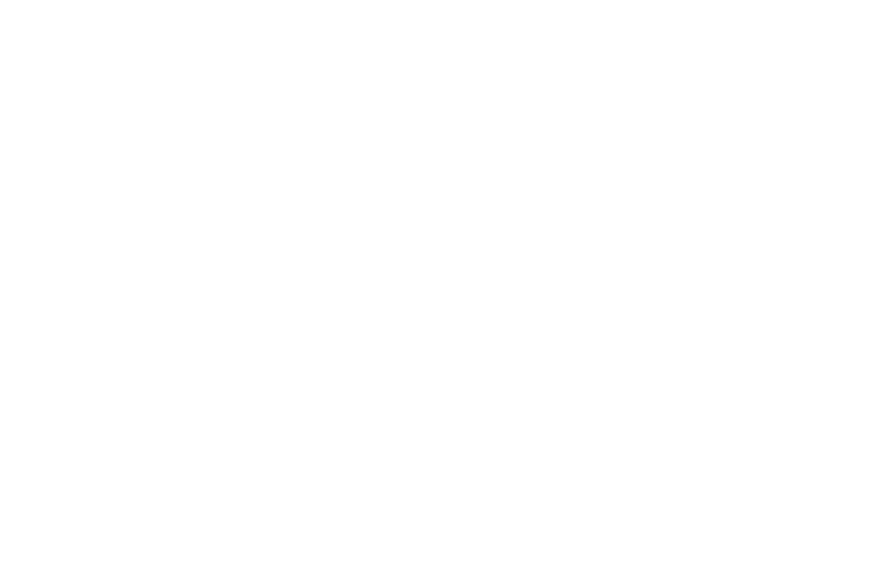 OFFICIAL SELECTION - White Lights City Film Festival - 2017 (1).png