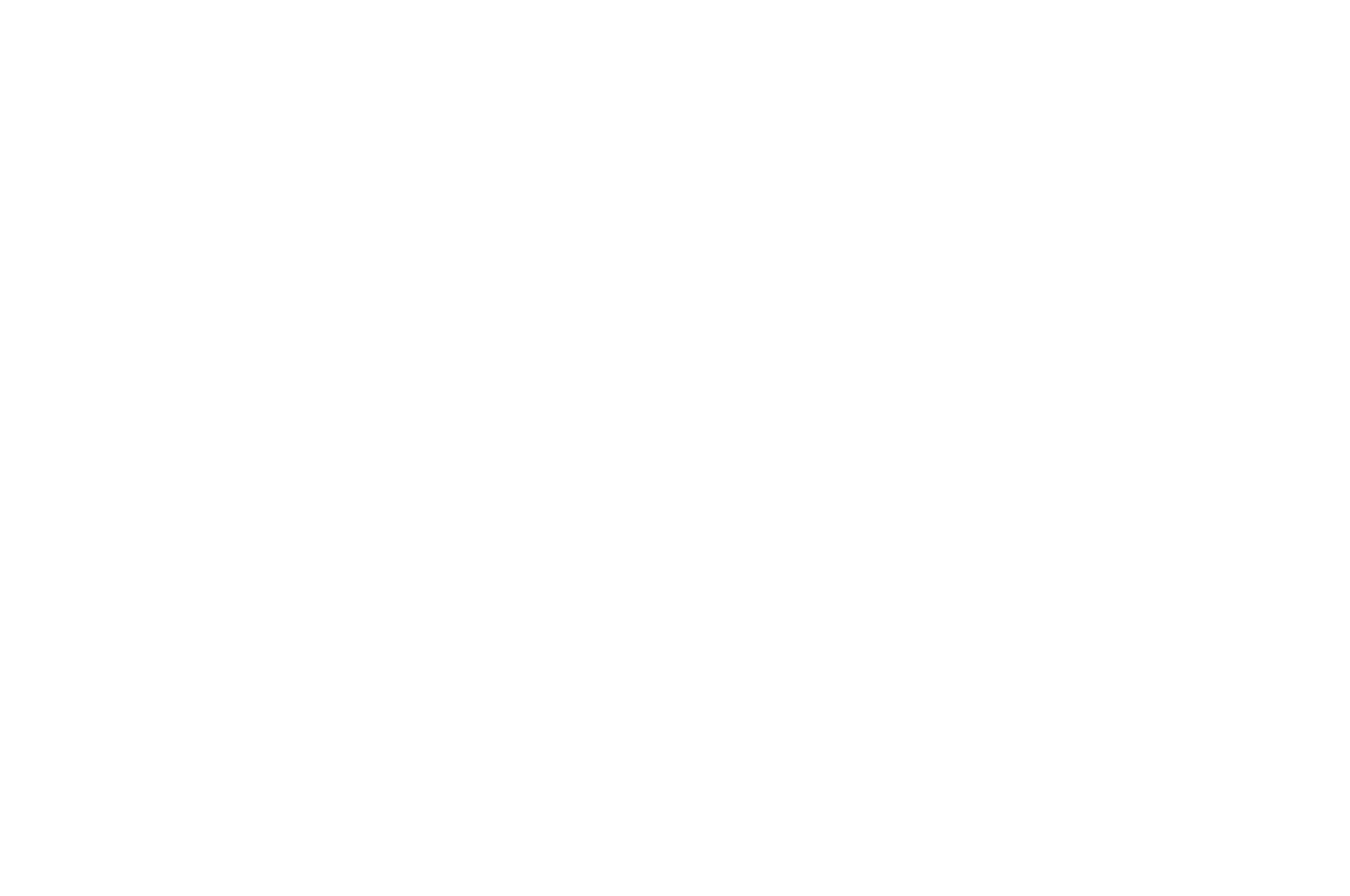 OFFICIAL SELECTION - Omaha Film Festival - 2014.png