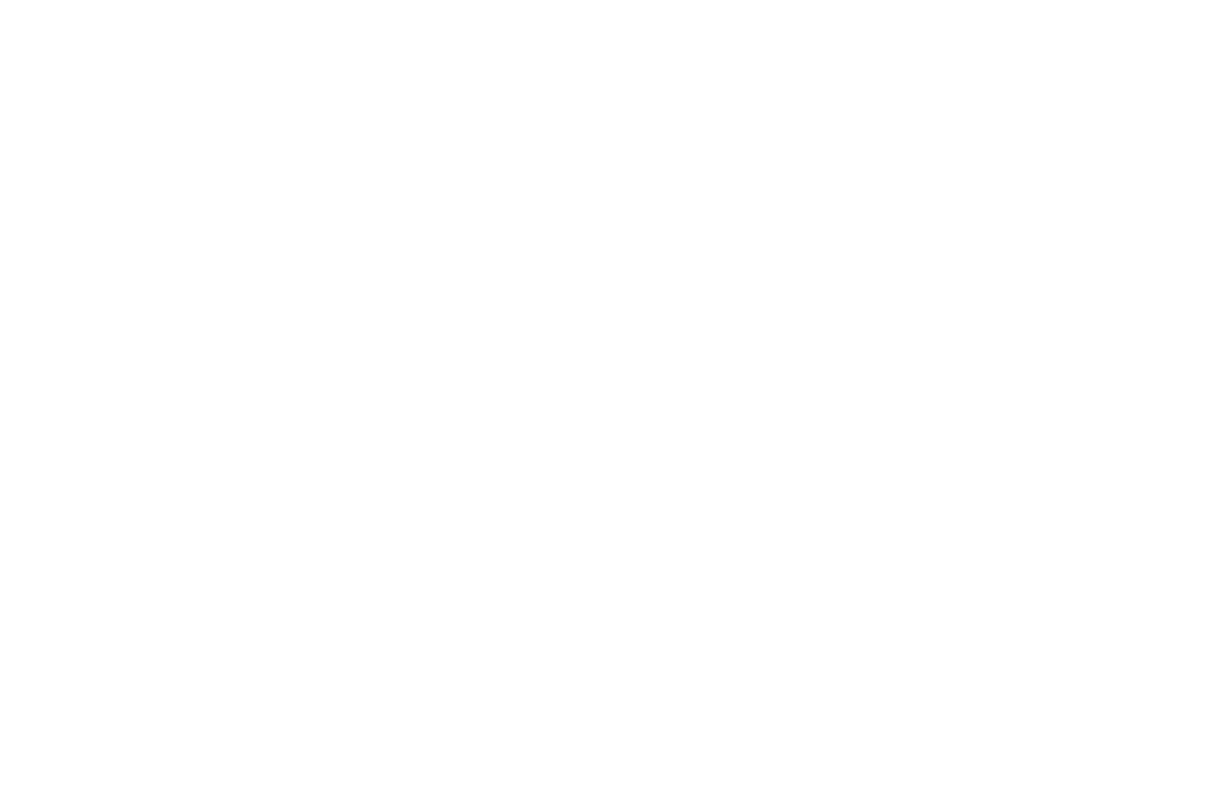 OFFICIAL SELECTION - Prairie Lights Film Festival - 2014.png