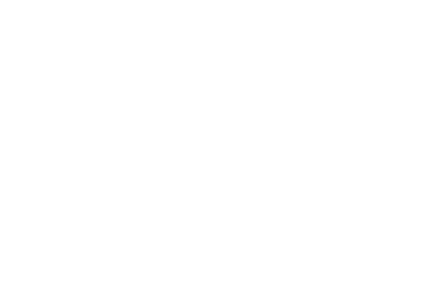 OFFICIAL SELECTION - Homegrown Film Festival - 2013.png