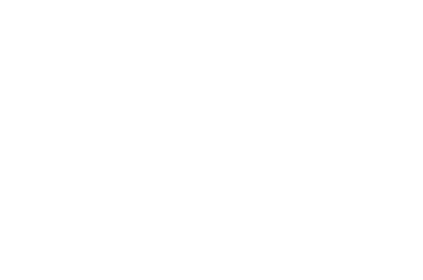 OFFICIAL SELECTION - Bare Bones International Film and Music Festival - 2018.png