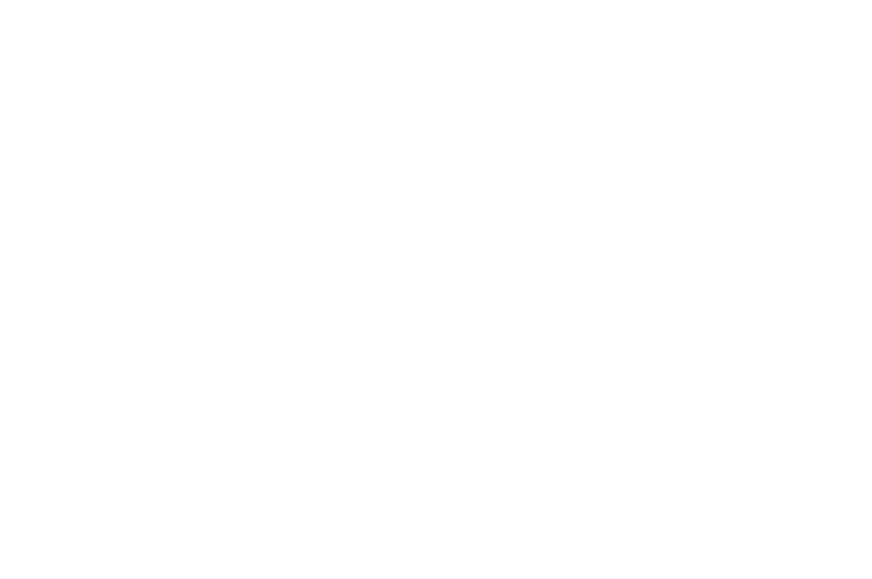OFFICIAL SELECTION - Genre Celebration Festival - 2018.png