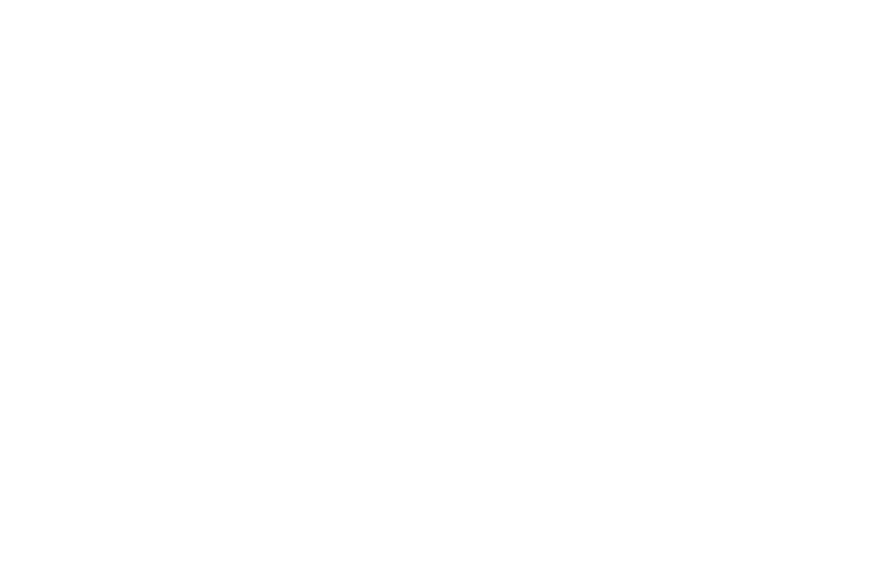OFFICIAL SELECTION - Sioux Empire Film Festival - 2018.png