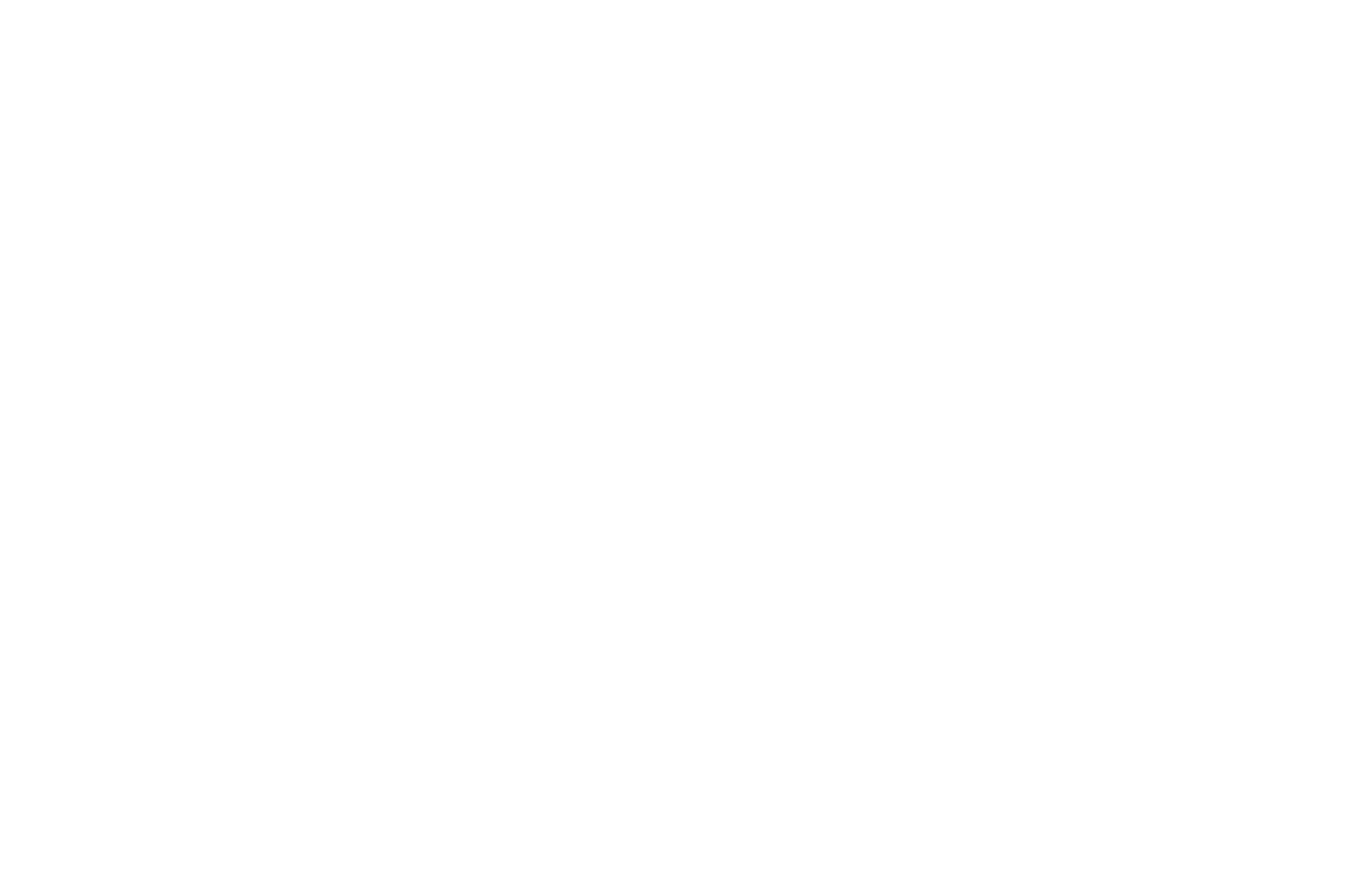 OFFICIAL SELECTION - Top Indie Film Awards - 2018.png
