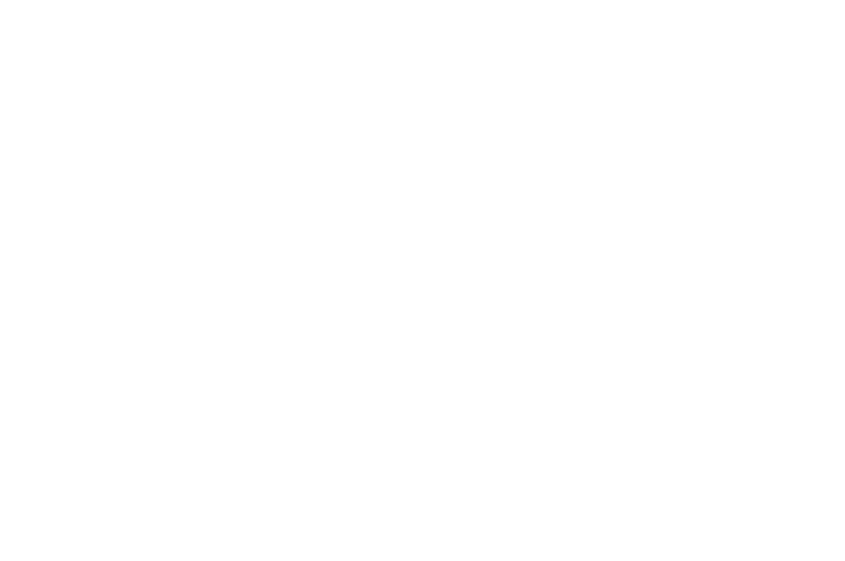 BEST DIRECTOR NOMINATION - TOP INDIE FILM AWARDS - 2018.png