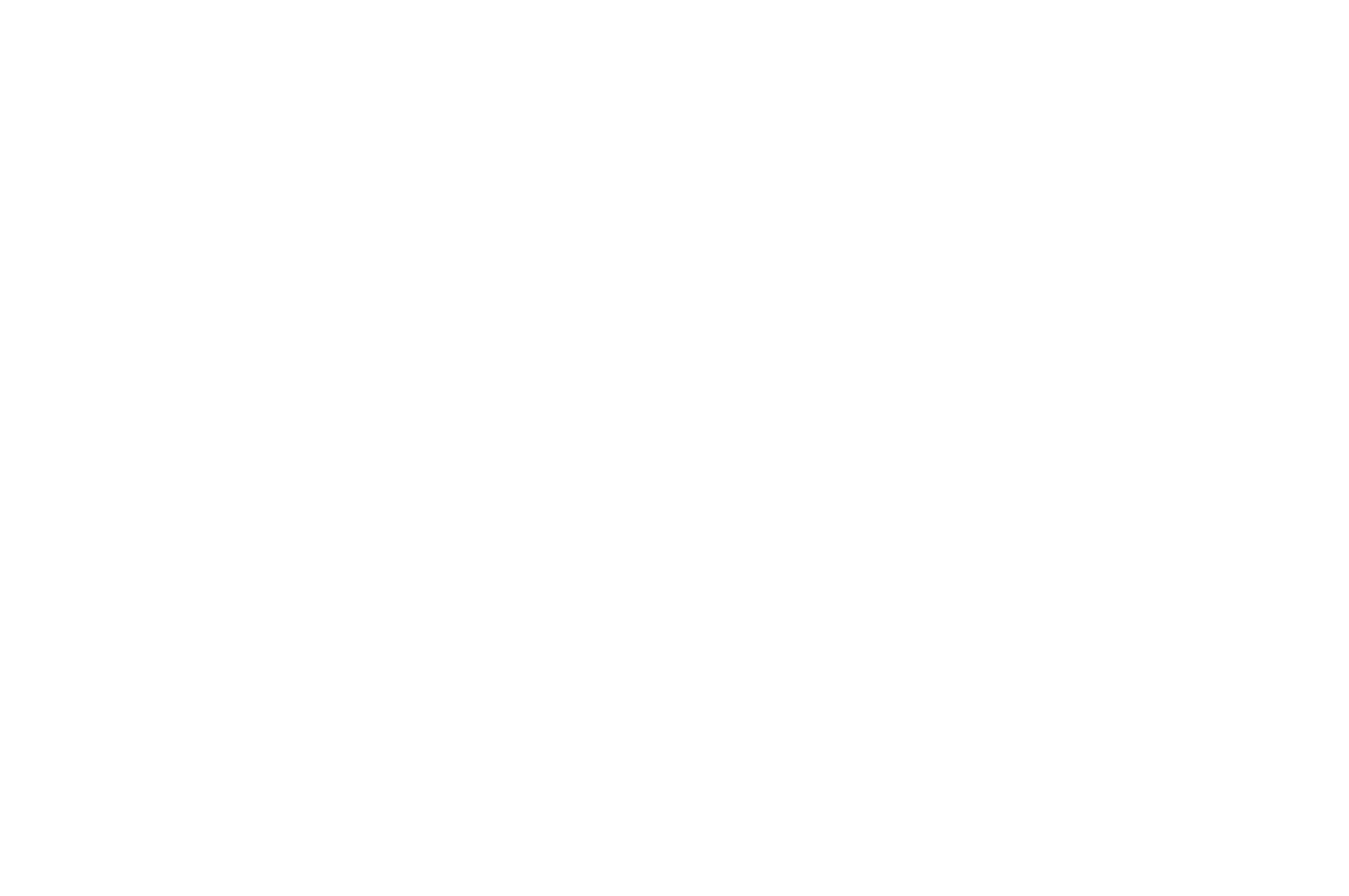 OFFICIAL SELECTION - Iowa Independent Film Festival - 2018.png