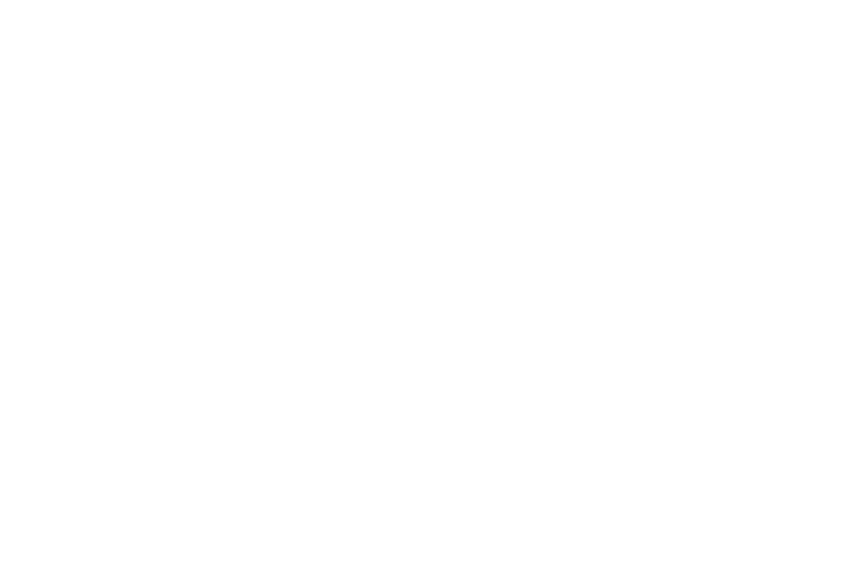 OFFICIAL SELECTION - Kansas International Film Festival - 2018.png