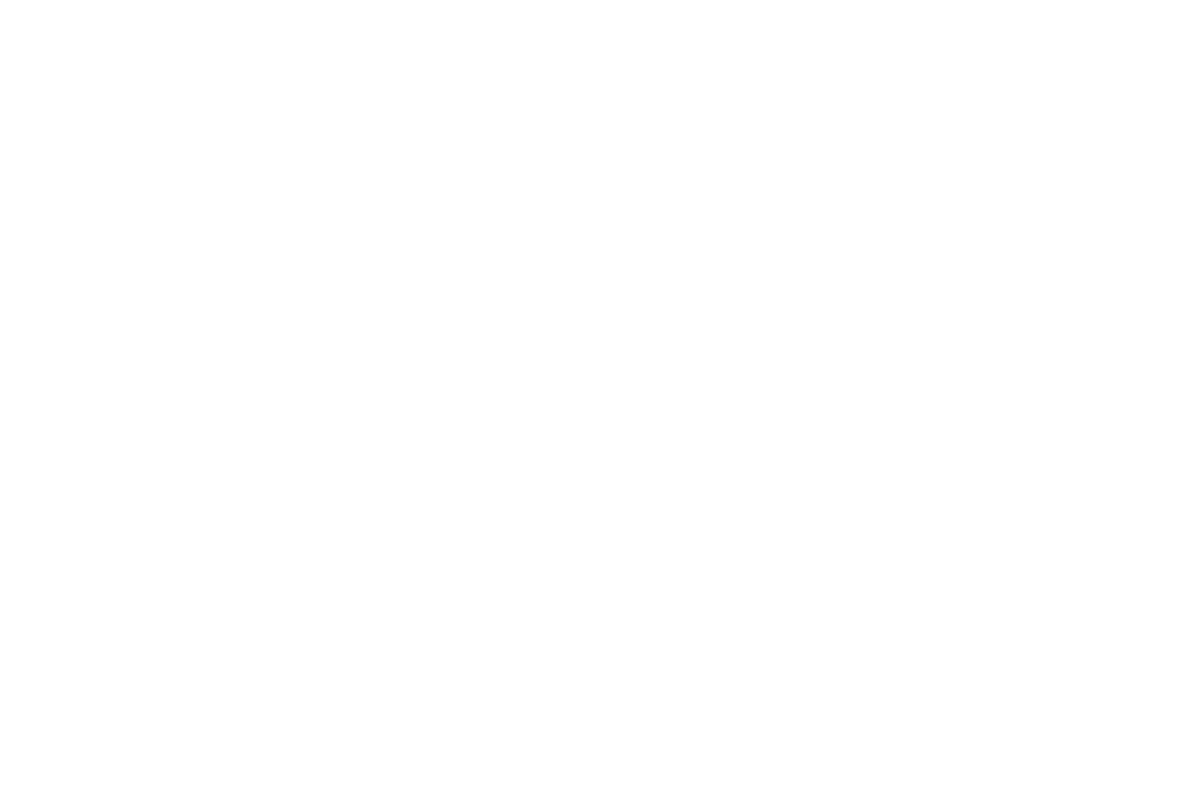 OFFICIAL SELECTION - Night of the Short Film - 2018.png