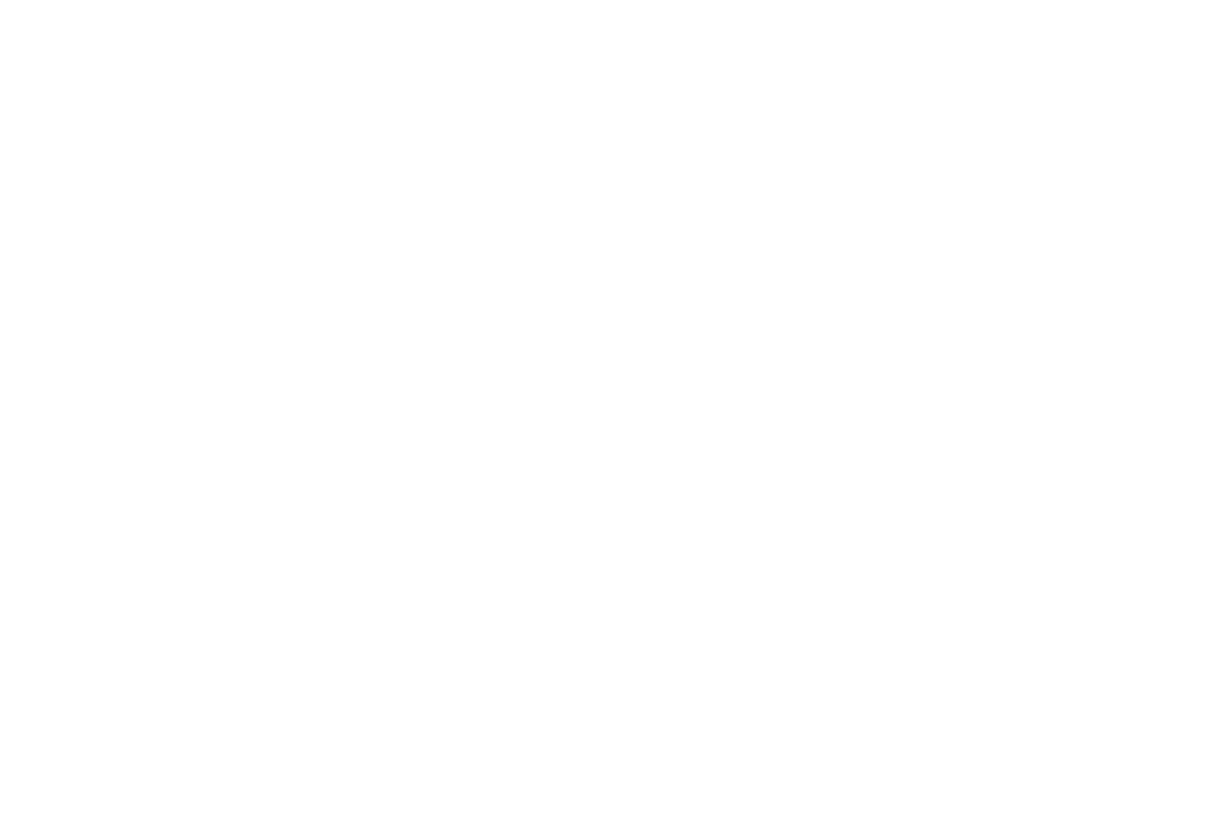 Semi Finalist - AltFF Alternative Film Festival - 2018.png