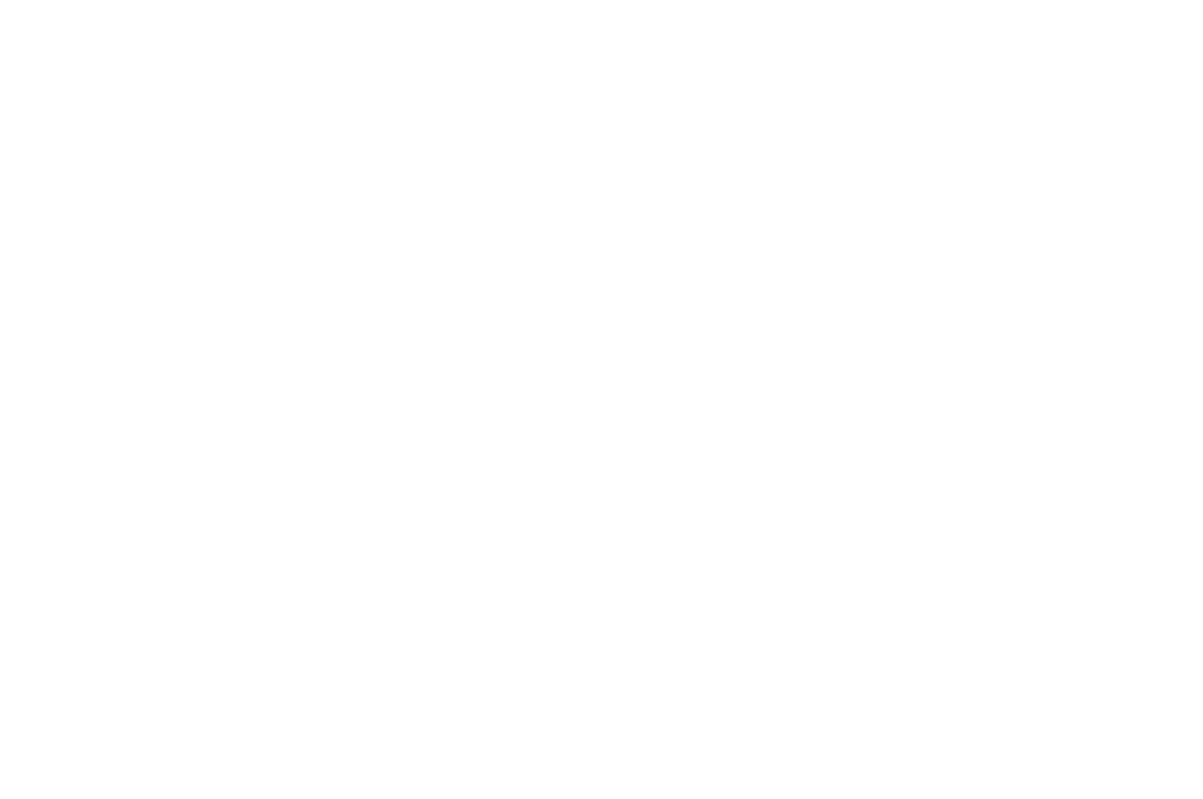 OFFICIAL SELECTION - AltFF Alternative Film Festival - 2018.png