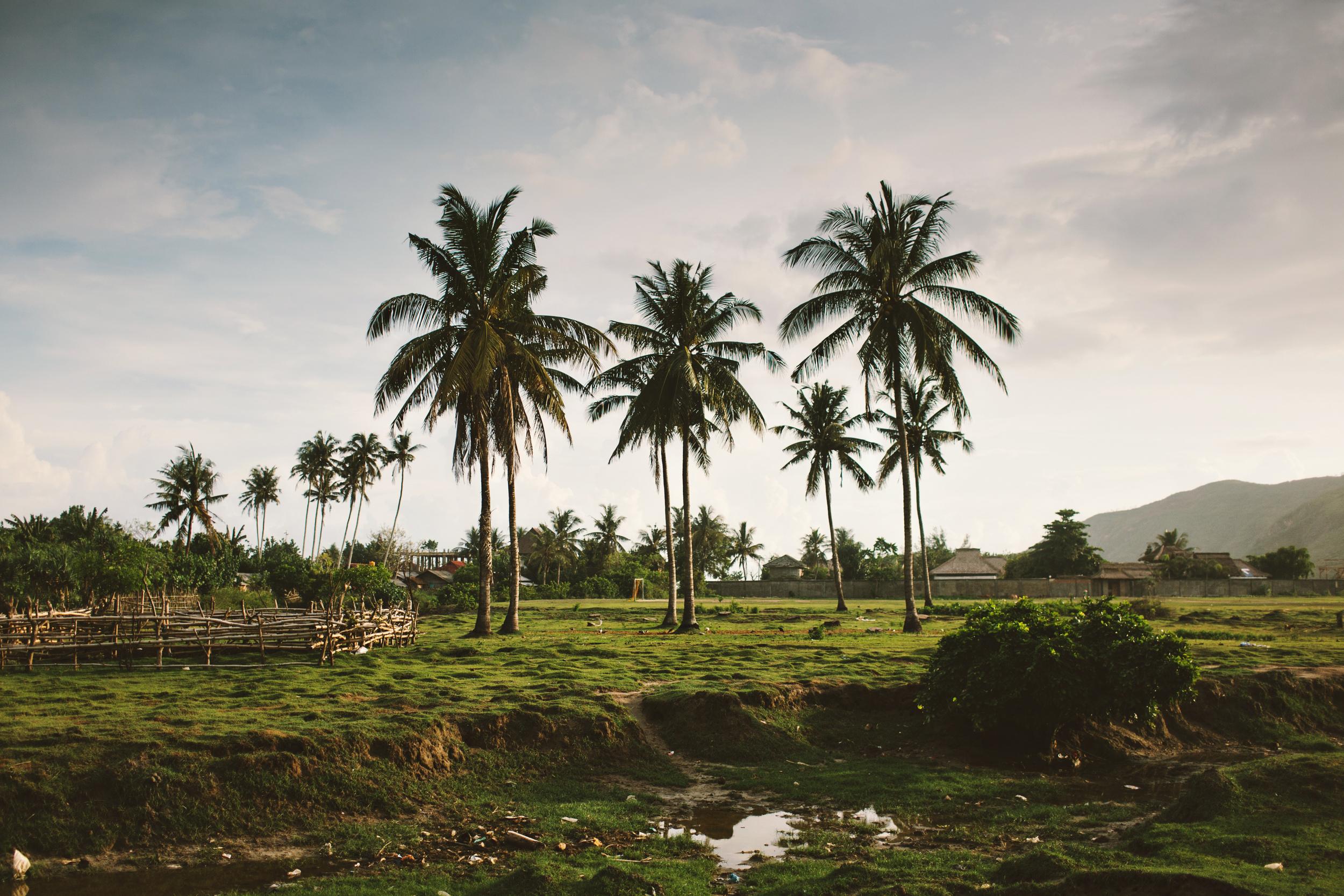 Indonesia-0444.jpeg