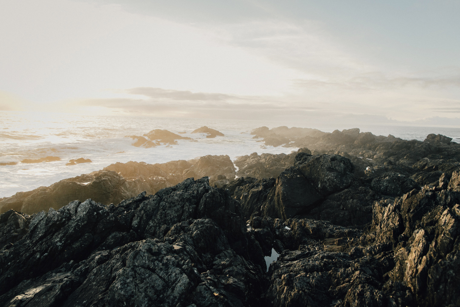 Ucluelet-Black-Rock-Resort-Hike-211.jpg