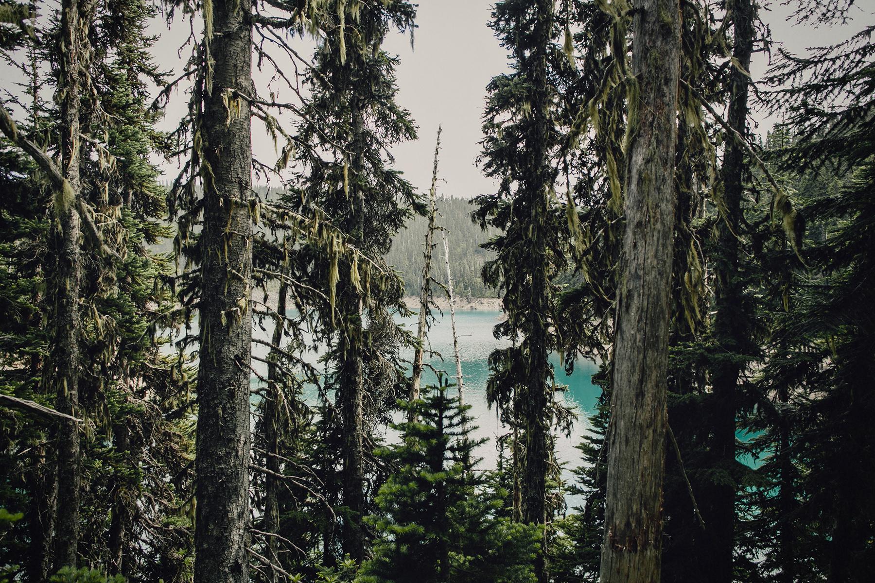 black-tusk-hike-garibaldi-provincial-park-photo-00281.jpg